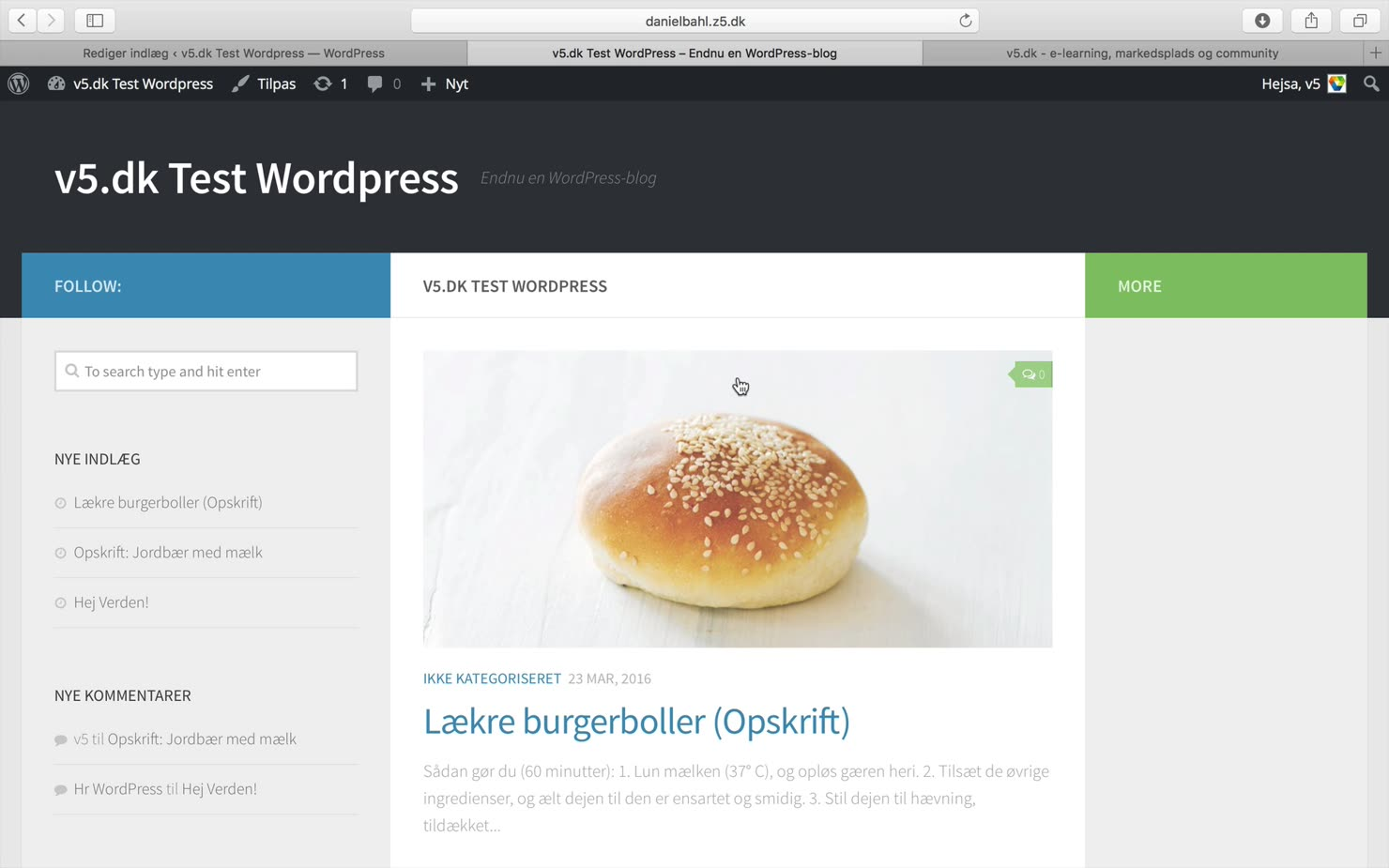 Temaer i WordPress